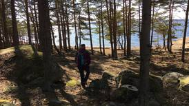Turtips: Munken –en Torsnes-klassiker