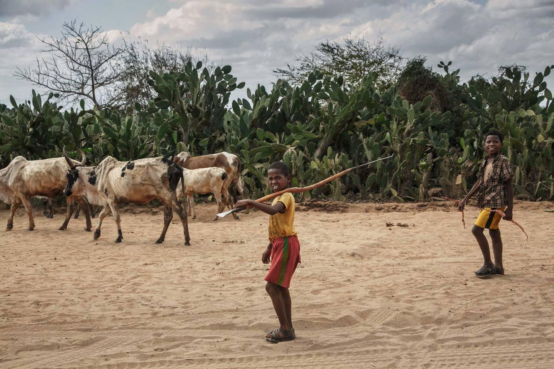 Madagaskar er ikke uvant med tørke som rammer avlingene. Men den pågående tørken er er i ferd med å bli en sultkrise forårsaket av klimaendringer, mener FN.