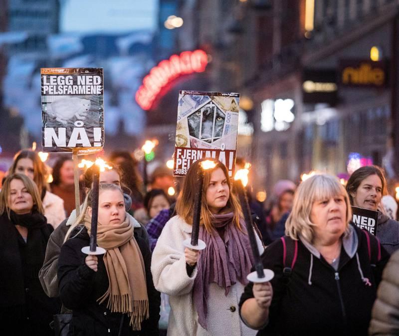 Rekord: I fjor gikk over 9.000 mennesker i NOAHs fakkeltog mot pels i Oslo og en rekke andre byer. FOTO: AUDUN BRAASTAD/NTB SCANPIX