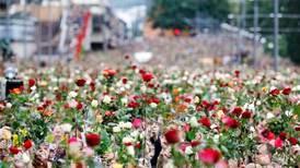 Da Oslo ble tømt for roser