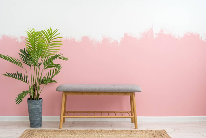 Lyst på rosa stue? Du er ikke alene.
