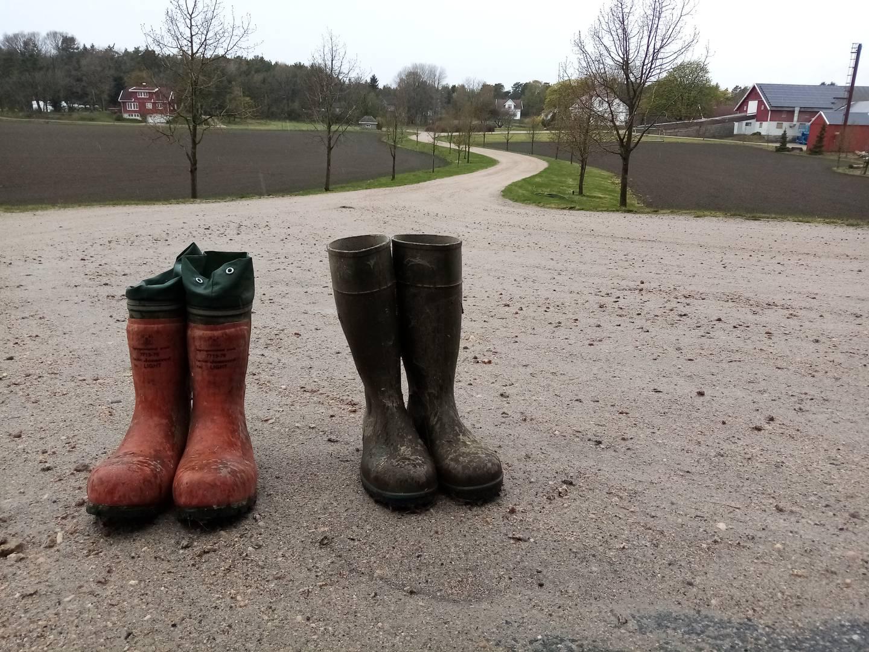 På 1960-tallet hadde Torsnes et tredvetalls gårdsbruk som drev med kyr. I dag er det bare fem igjen. Disse støvlene er satt ut i veikanten ved Humlekjær gård under det pågående bondeopprøret for å minne forbipasserende om misnøyen som rår.