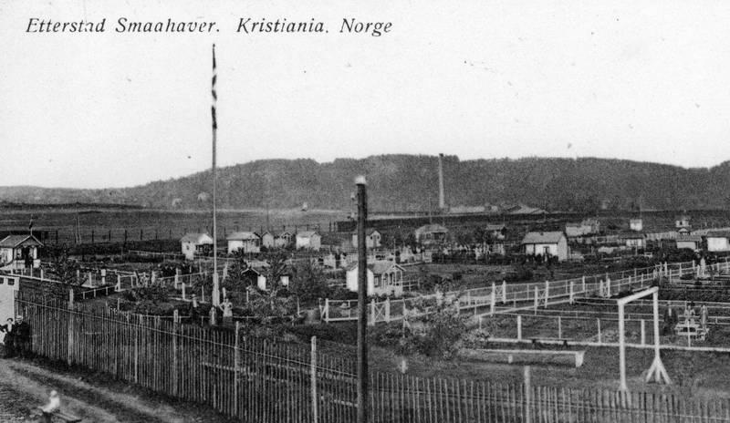 Etterstad Smaahaver i Etterstadgata 18C, fotografert en gang før 1924. Opprinnelig var det 89 parseller i Etterstad kolonihage, alle på 150 kvm, men én parsell ble gitt avkall på for å bygge felleshus og lekeplass. Postkort fra Norsk Lystryk- & Reproduksjonsanstalt 377.