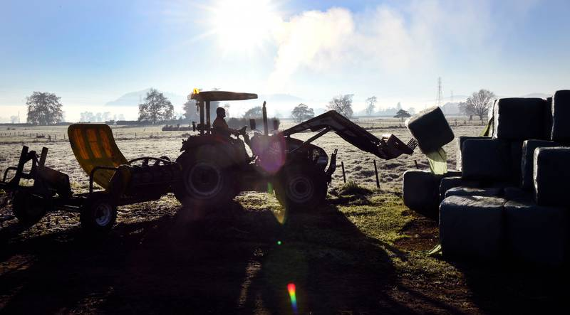 Tusenvis av bønder protesterer mot myndighetene i New Zealand. På bildet: En newzealandsk bonde som laster silofôr.