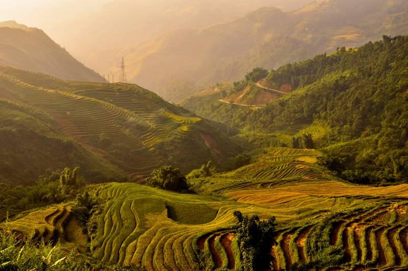 Dagene kan tilbringes med å gå turer mellom risterrassene, som slynger seg vakkert gjennom landskapet. FOTO: JAKUB ZAJAC