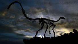 12-åring fant et 69 million år gammelt dinosaursfosil på tur med far