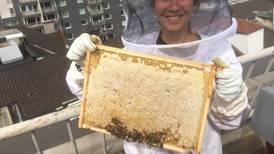 Summende suksess fra Grønland med medalje i honning-NM