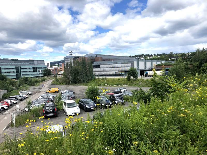 Her vil beboerne ha park i Nydalen.