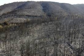 Grekerne begynner å få kontroll på brannene