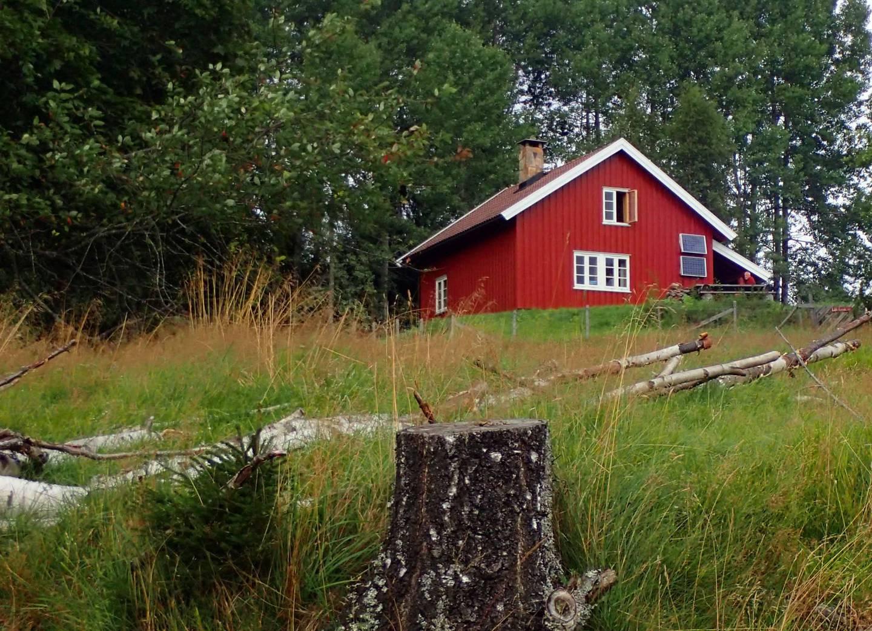 Glitreplassen er en gammel finneplass.