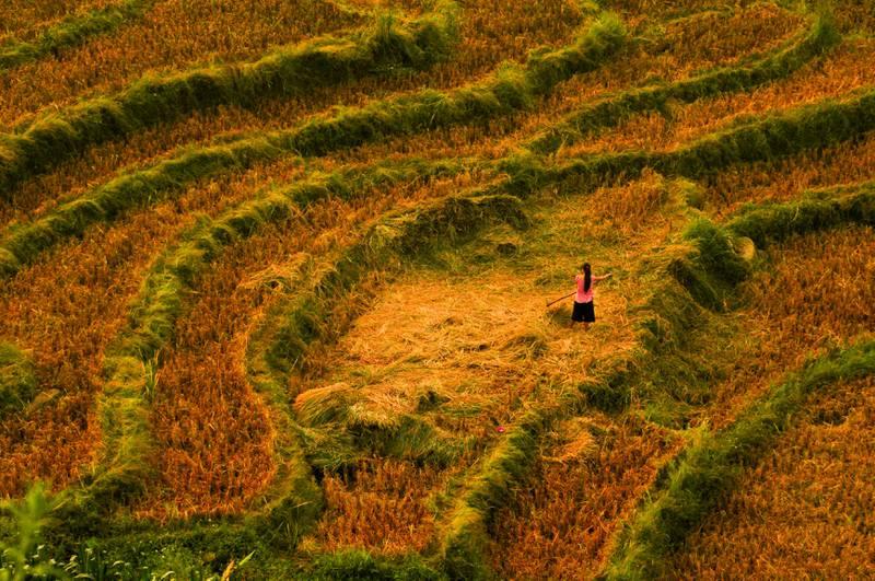Oppleve det ekte Vietnam gjennom å bo på homestay i landsbyen Hau Thau, eller en av de andre landsbyene i Nord-Vietnam. FOTO: JAKUB ZAJAC