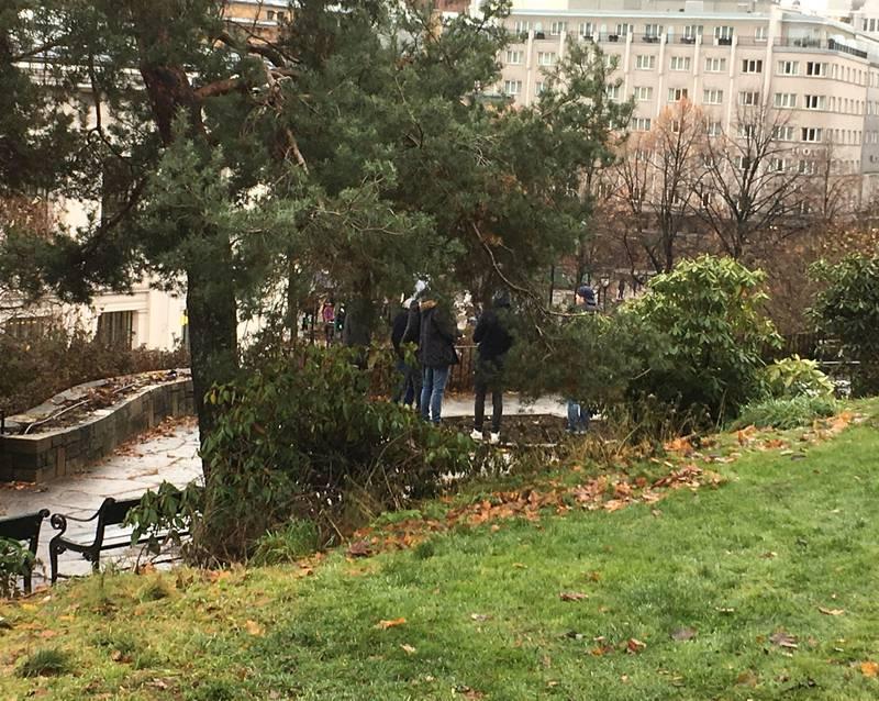 Nisseberget 2016: Noen gutter har samlet seg på Nisseberget.