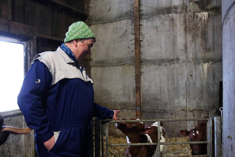 Leder i Rennesøy Bondelag, Guttorm Gudmestad, er bekymret for beitedyrene sine. Han mener det burde være båndtvang hele året på Finnøy og Rennesøy.