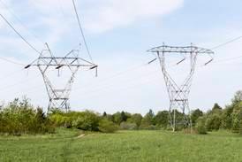 Rekordhøye strømpriser kan koste norske bønder en halv milliard