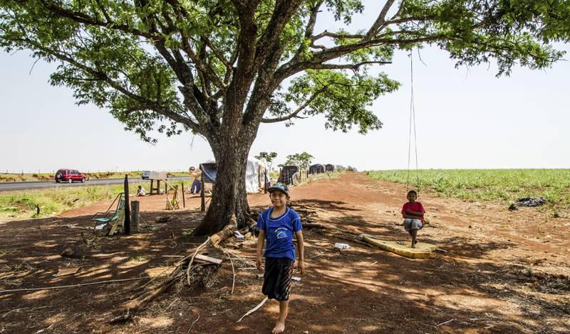 To barn leker ved siden av de enorme sukkerplantasjene som karakteriserer landskapet i delstaten Mato Grosso do Sul i Brasil. Langs veiene i delstaten finnes det flere tilbaketakelser av jord, eller jordokkupasjoner.