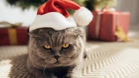 Dette er klodens rareste juletradisjoner