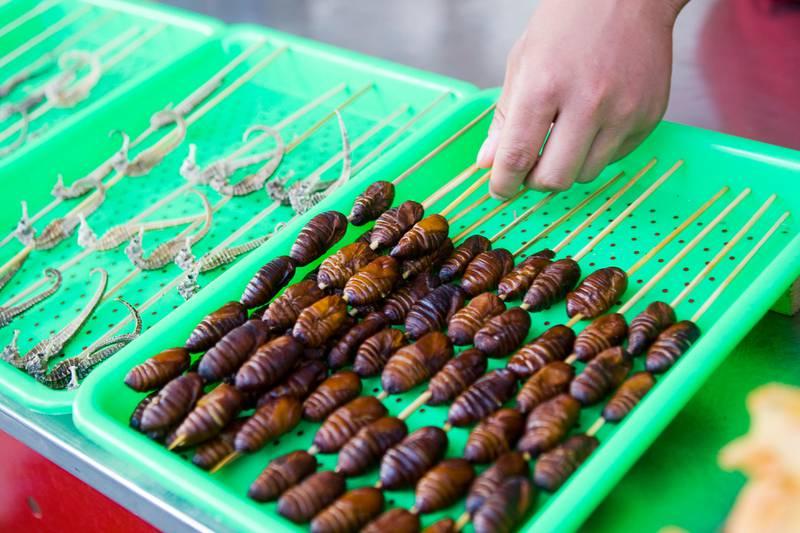 BEIJING, KINA 20080714: Donghuamen Yeshi markedet mitt i hjertet av Beijing, byr på eksotisk og billig mat fra sen ettermiddag til langt på natt. På menyen finnes blant annet blekksprut, larver, slanger og firfisler fritert på spyd.  Foto: Heiko Junge / SCANPIX