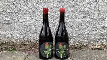 Tores vin: Herlig, fruktig og økologisk vin fra Spania
