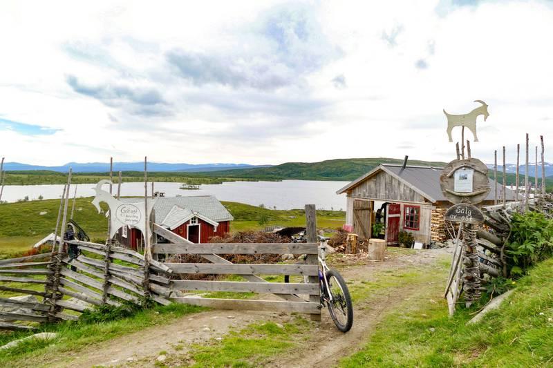 På Olestølen kan du få kjøpt godsaker fra budeia.