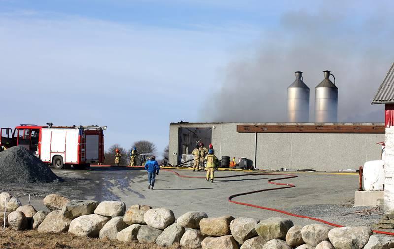 Et hønsehus med rundt 20.000 kyllinger på Finnøy i Rogaland har brent ned. Ingen av kyllingene ble reddet ut.