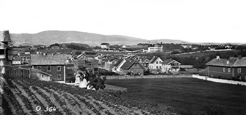 Overblikk: Balkeby før brannen i 1878 sett fra toppen av Majorstuveien.