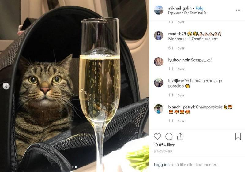 Katteeier Mikhail Galin la ut bilde på instagram av overvektige Viktor, etter at han med suksess var blitt smuglet inn på flyet. Drikken i glasset antas å være Champagne.