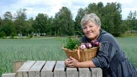 Er ikke landbruk og næringsmiddelindustri næringsutvikling?