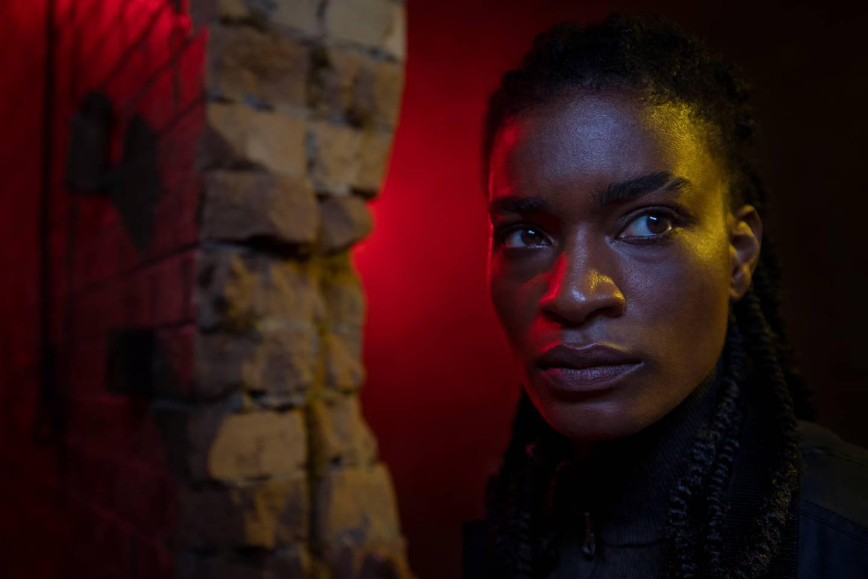 Agent 355 (Ashley Romans) er spesialagenten som får i oppdrag å redde Yorick, den eneste mannen igjen i verden. Det innebærer at hun må redde guttemannen fra seg selv også.