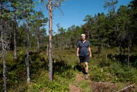 Venstre gravlegger mål om gratis skogvern