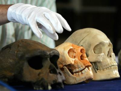 Forskning: – Klima kan ha påvirket menneskekroppens størrelse