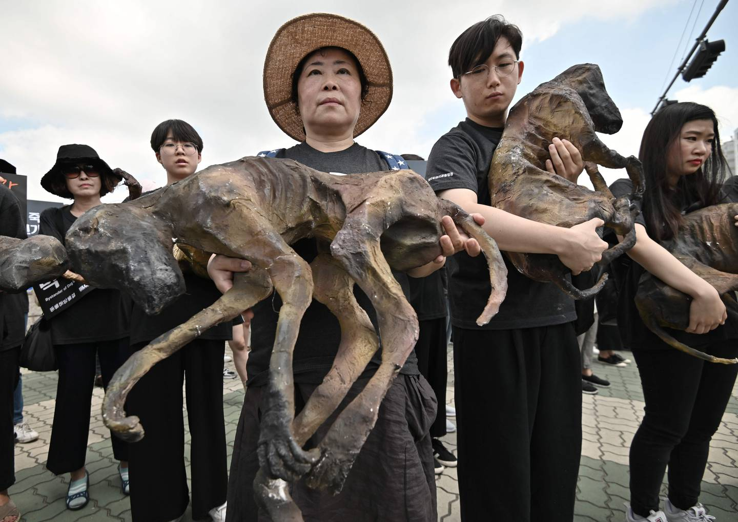 TOPSHOT - South Korean animal rights activists hold likenesses of dead dogs during a protest against the dog meat trade in front of the National Assembly in Seoul on July 12, 2019. - Boiled dog meat has long been a part of the cuisine and remains a delicacy for some in South Korea, with about one million dogs believed to be eaten annually. (Photo by Jung Yeon-je / AFP)
