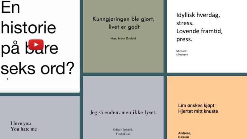 Viken fylkesbibliotek og UKM Viken har lansert skriveprosjektet og -konkurransen Seksord.no, for unge mellom 13 og 25 år.