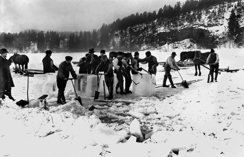 ØSTENSJØVANNET 1902: Isskjæring foregikk også i naturlige innsjøer og vann. FOTO: OLAF MARTIN PEDER VÆRING/OSLO MUSEUM