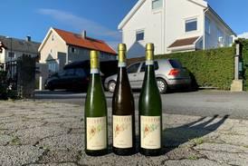 Tores vin: Duggfrisk og deilig Soave