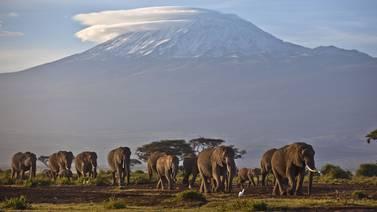 FN: 100 millioner i Afrika trues av klimaendringene