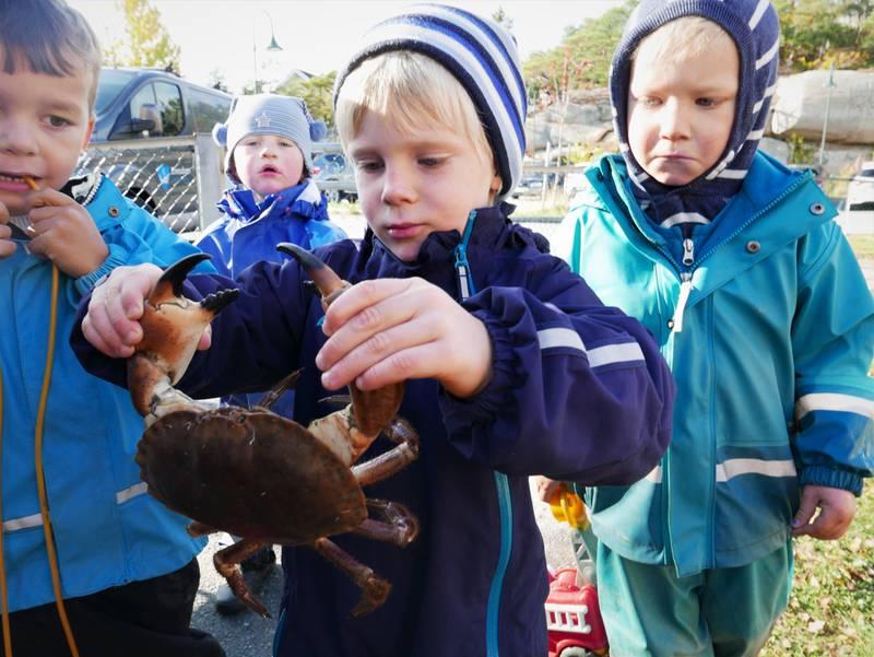 Elliot klarer å holde krabben selv også. Ved siden av står Gabriel Hansen Gharbi og Sigurd Mydske Stenmoen-Hustad til venstre. Til høyre står Oliver Andreas Arntsen.