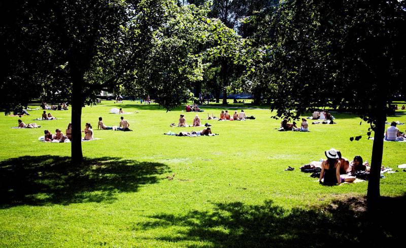 Sofienbergparken bidrar til at tett befolkede Grünerløkka har 24 kvadratmeter vegetasjon per innbygger.