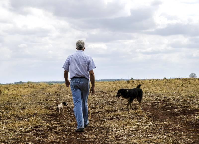 «Jeg er italiener, helt uten blanding», sier Luis da Malha med stolthet. Han eier 400 hektar jord og produserer både mais, soya og sukker. Blant kjøperne befinner både Cargill og Bunge seg, to selskaper børsnotert i USA hvor det norske Oljefondet investerer.
